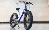 [يون] [ينغ] [36ف16ا] [دك] فرشاة جهاز تحكّم لأنّ درّاجة كهربائيّة