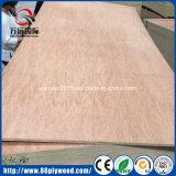 Contre-plaqué imperméable à l'eau commercial de Bintangor de faisceau de bois dur de la colle E2
