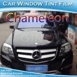 자유로운 출하 가장 새로운 카멜레온 담채 비닐 차 창 필름
