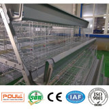 Клетки фермы цыпленка батареи большой емкости оборудования цыплятины