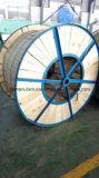 Acciaio dei conduttori di offerta ACSR/Aluminum della fabbrica di rinforzo fatto in Cina