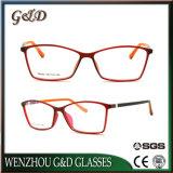 Oogglas van uitstekende kwaliteit Eyewear van het Frame van de Glazen van de Reeks van de Manier Tr90 het Optische