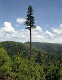 鋼鉄管によってごまかされるコミュニケーション木タワー