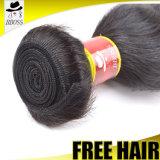 Prolonge non transformée péruvienne de cheveu de 100%