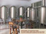 200L, 500L, de Apparatuur van het Bier 1000L voor en Bier dat vergist brouwt