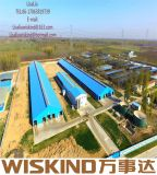 중국 강철 구조물 건물 판매를 위한 조립식 닭장