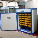 Completamente automática de huevo incubadora Incubadora de huevos de Gallina Clueca Solar