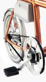 Tsinova의 색깔 Electrci 청동색 자전거