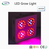 Apollo Wholesale-Price crecer LED de luz para las plantas de interior y flores