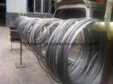 중국 제조자에서 최고 급료 질 탄탈 니오브 합금 철사