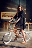 Tsinova 2017 elektrisches Fahrrad-aufladenfahrräder E-Fahrrad 20-Inch Aluminium-Rahmen