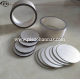 Elemento di ceramica del doppio piezo-elettrico del disco per il Massager facciale