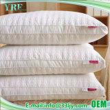 Acomodações confortáveis e modernas almofadas para Dormitório