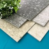 Keramikziegel-italienische Konzept-Baumaterialien Fußboden und Wand-Fliese (TER603-ASH)