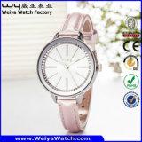OEM/ODM klassische beiläufige Quarz-Dame-Armbanduhr (Wy-043B)