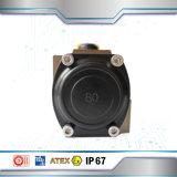 Actuador neumático temporario doble hecho en China