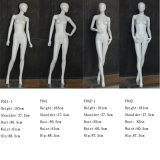 Full Body Fiberglass Woman Mannequin with Egg Head
