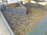 ヒマワリの種ピーナツキノアの豆の穀物のシードの石取り機