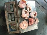 Prezzo all'ingrosso d'agricoltura cinese del pesce gatto