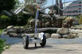 1000W LEDライトが付いている電気蹴りのスクーター