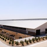 보일러를 위한 Prefabricated 강철 구조물 닭장