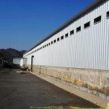Camera di pollo prefabbricata della struttura d'acciaio per la griglia