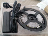 ブリスタ包装(SMD3528/SMD5050)が付いている熱い販売LEDの滑走路端燈