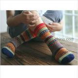 Le bande operate progettano popolare per i calzini accoglienti del cotone della casa del vestito dai capretti