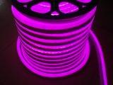 Indicatore luminoso al neon della corda della flessione di Digitahi LED della decorazione di natale (DLSM)