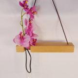 Unique Supporto del fiore del tubo di vetro con la decorazione d'attaccatura di legno di faggio