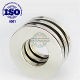 Ring Gesinterd Magnetisch Materiaal NdFeB/voor de Luidspreker van de permanent-Magneet