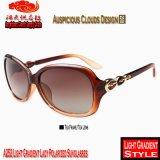 Madame légère Polarized Sunglasses du gradient A252