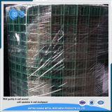ячеистая сеть дюйма 1X1 покрынная PVC сваренная