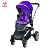 Les marchettes pour bébés avec le système de voyage facile à plier
