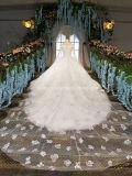 ホールのウェディングドレスのブランドデザイン象牙映像