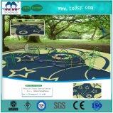 Diamètre extérieur 114 de pipe de Galanized de matériel de cour de jeu de parc d'attractions de la Chine