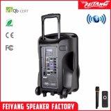 Feiyang/Temeisheng 12 Zoll Bluetooth Lautsprecher mit Laufkatze und LED (CX-12D)