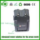 Elektrische Fahrrad-Batterie der Ebike Batterie-Rückseiten-Zahnstangen-Art-36V 10ah