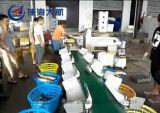 Le tri du poisson d'exportation de la machine avec ce certificat SGS