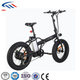 """20"""" 250 Вт с электроприводом складывания велосипедный спорт пляж и снег велосипед с 36V литиевая батарея"""