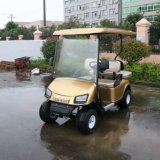 4 carros de golfe elétricos da caça da pessoa para a venda