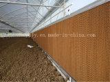 Garniture de refroidissement par évaporation de système de refroidissement d'utilisation de serre chaude