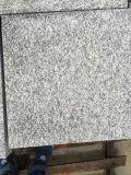China mosaico granito G688 de la pared y suelo