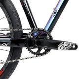 Heißes Mountian Kohlenstoff des Verkaufs 27.5er 12speed Fahrrad mit dem 19mm Rad