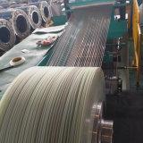 striscia dell'acciaio inossidabile 316L/1.4404/022cr17ni12mo2/SUS316L