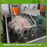 Свинья Farrowing ящики / Farrowing ящиков для свиней