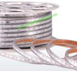 Indicatore luminoso di striscia impermeabile del certificato SMD5730 LED del Ce di alta luminosità