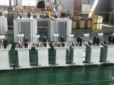 Transformateur électrique immergé dans l'huile monophasé de petite capacité