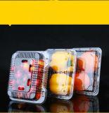 Еда прямоугольника PE/PP ясные/прозрачные пластичные/контейнер/коробка/упаковывать плодоовощ с крышкой/кружкой/крышкой