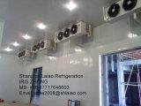 Cella frigorifera/stanza congelata stanza/camminata conservazione frigorifera in dispositivo di raffreddamento più freddo